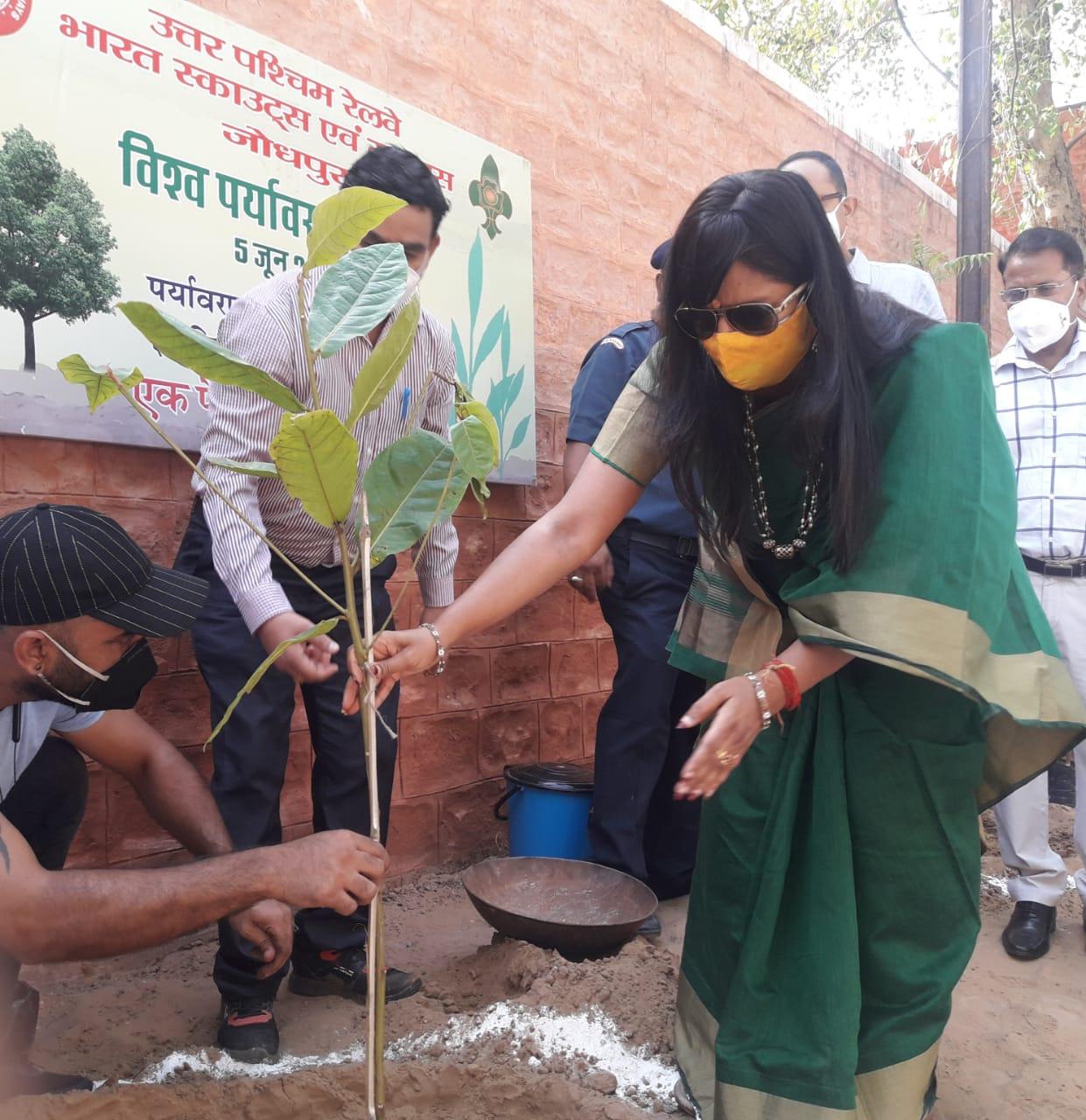 जोधपुर रेल मंडल ने एक दिन में 250 से ज्यादा स्थानों पर 4700 पौधे लगाये|राजस्थान,Rajasthan - Dainik Bhaskar