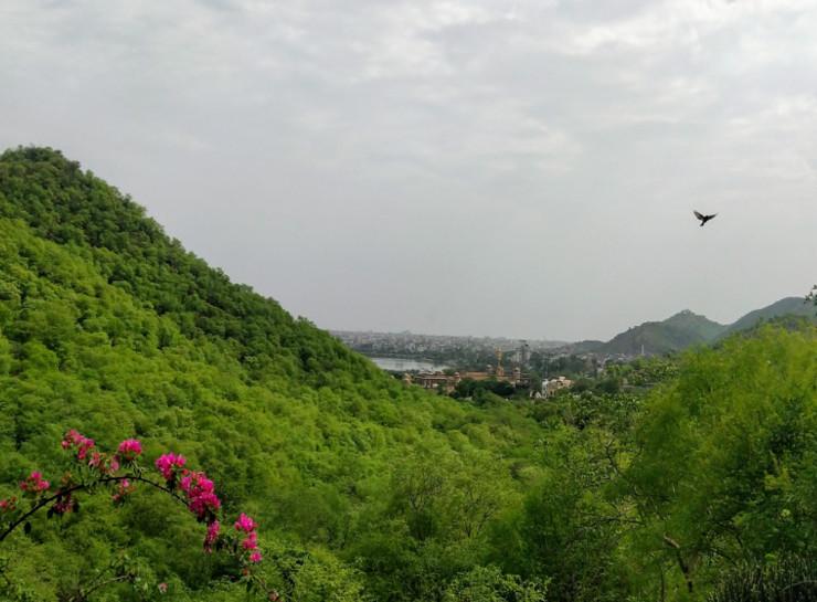 हरियाली के बीच नजर आ रहा कनक वृंदावन। राजधानी जयपुर में आमेर रोड पर यह उद्यान सैलानियों को काफी रिझाता है। यह अरावली पर्वतमाला से घिरी आमेर घाटी में बना है। इसके नजदीक प्राचीन गोविंद देव जी का मंदिर भी स्थित है।