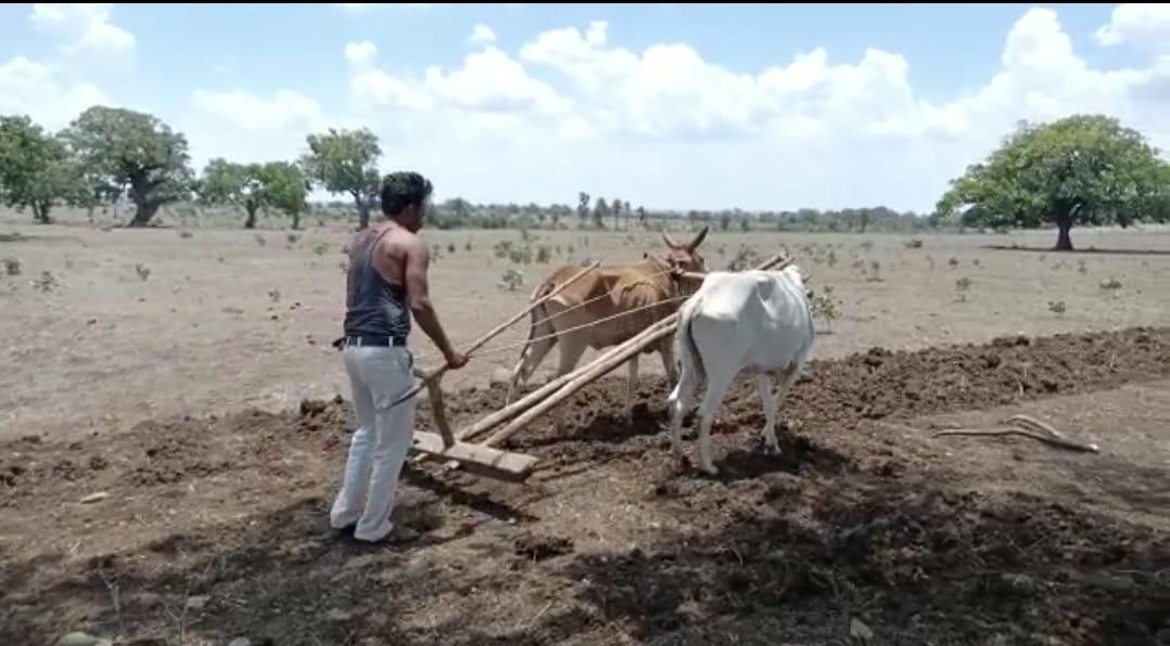 गुस्साए किसानों ने प्रशासन से कहा- रोजगार देने का वादा करके जमीन छीन ली, अब तक प्लांट चालू हुआ ना रोजगार मिला, हम अब जमीन पर करेंगे खेती|छिंदवाड़ा,Chhindwara - Dainik Bhaskar