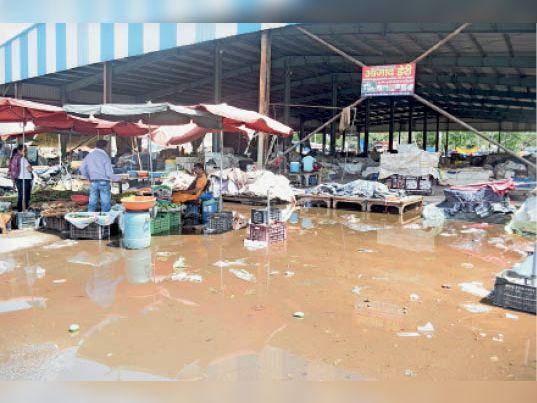 ठेकेदार और अधिकारियों ने नाला गैंग का सही इस्तेमाल नहीं किया, सफाई होती ताे 20 एमएम बारिश में ही ऐसे हालात न होते|पानीपत,Panipat - Dainik Bhaskar