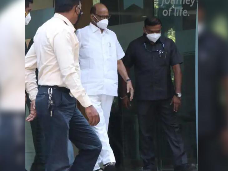 नेशनल कांग्रेस पार्टी (NCP) के चीफ शरद पवार ने रविवार दोपहर हिंदुजा हॉस्पिटल जाकर दिग्गज अभिनेता दिलीप कुमार का हाल जाना।