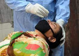 जालंधर में 24 घंटे में 113 लोग कोरोना पॉजिटिव व 4 लोगों ने दम तोड़ा, लगातार चौथे दिन 200 से कम मरीज मिले जालंधर,Jalandhar - Dainik Bhaskar
