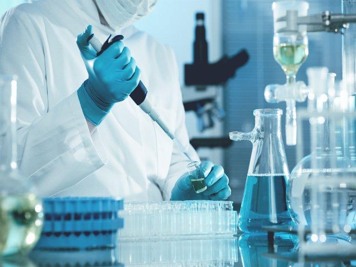 राष्ट्रीय अश्व अनुसंधान केंद्र के वैज्ञानिकों को मिली बहुत बड़ी जम्मेदारी, एंटी वायरल ड्रग तैयार करेंगे हरियाणा,Haryana - Dainik Bhaskar