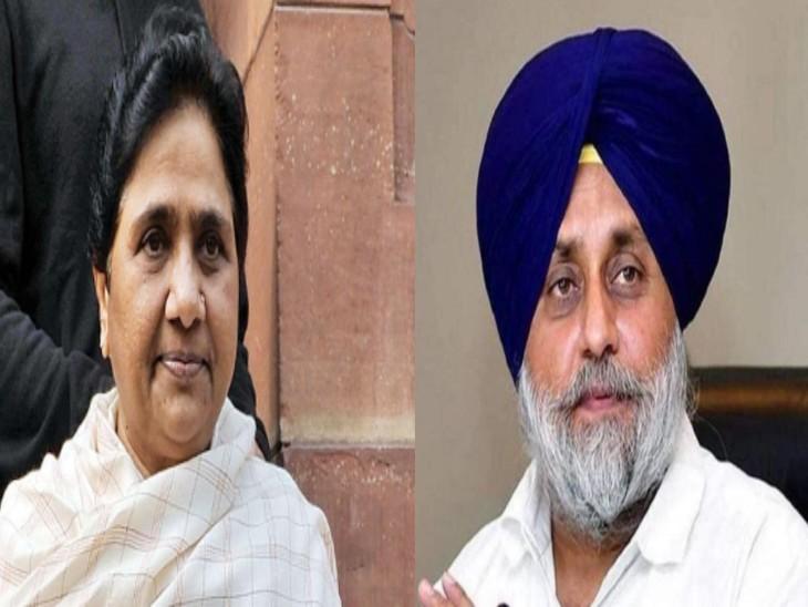 शिअद अध्यक्ष सुखबीर बादल ने दलित को डिप्टी सीएम बनाए जाने की घोषणा की है। - Dainik Bhaskar