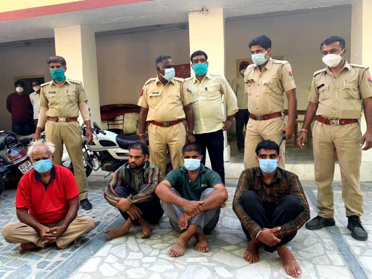 भोपा के बहकावे में आकर पहले ऊंट को खूब खिलाया, फिर काट दी गर्दन, घर के बाहर दफन किया; चार लोग गिरफ्तार|उदयपुर,Udaipur - Dainik Bhaskar