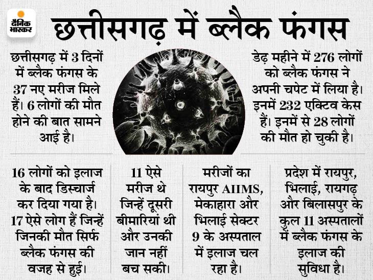 IMA के डॉक्टर्स ने सरकार से कहा- ब्लैक फंगस की सर्जरी फ्री में करेंगे हमें मंजूरी दें, अब तक हो चुकी हैं 28 मौतें|रायपुर,Raipur - Dainik Bhaskar