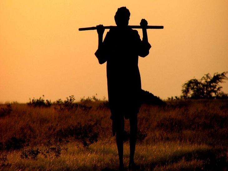 छत्तीसगढ़ सरकार ने धान की खेती का 9 लाख हेक्टेयर रकबा कम कर दिया, किसानों का कहना- दूसरी फसलों के लिए पहले तैयारी तो करते|छत्तीसगढ़,Chhattisgarh - Dainik Bhaskar