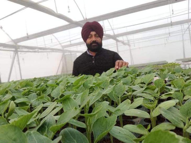 हरबीर सिंह कहते हैं कि हम सीजन के हिसाब से हर सब्जियों का बीज रखते हैं। कई किसान एडवांस बुकिंग भी करते हैं या ऑर्डर देकर अपनी पसंद का बीज तैयार कराते हैं।