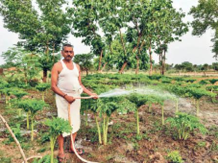 आरएनएम डिग्री कॉलेज के प्राचार्य ने लॉकडाउन में कृषि पर दिया जोर हंटरगंज,Herhanj - Dainik Bhaskar