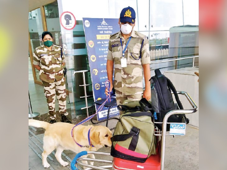 भारत और यूरोप का सर्वर जंप करवाकर भोपाल एयरपोर्ट पर किया था प्लेन हाइजैक का कॉल भोपाल,Bhopal - Dainik Bhaskar