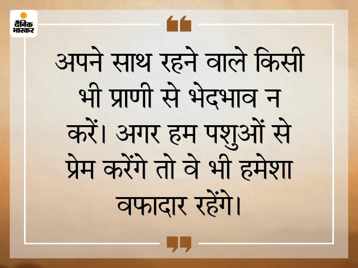 सिर्फ इंसानों के साथ ही नहीं, पशुओं के साथ भी प्रेम का रिश्ता रखें|धर्म,Dharm - Dainik Bhaskar