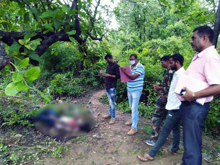 पेड़ में टक्कर मारने से युवक के साथ हादसे की आशंका, घटनास्थल पर मिला बाइक का शीशा और पावदान झारखंड,Jharkhand - Dainik Bhaskar