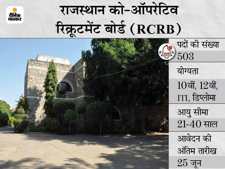 राजस्थान को-ऑपरेटिव रिक्रूटमेंट बोर्ड ने जनरल मैनेजर समेत 503 पदों पर निकाली भर्ती, 25 जून तक करें ऑनलाइन आवेदन|करिअर,Career - Dainik Bhaskar