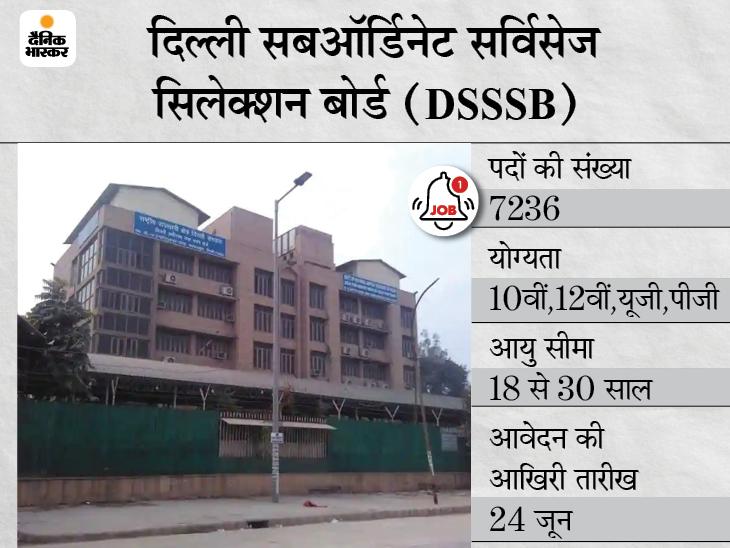 दिल्ली सबऑर्डिनेट सर्विस सिलेक्शन बोर्ड ने विभिन्न 7236 पदों पर निकाली भर्ती, 24 जून तक करें अप्लाई|करिअर,Career - Dainik Bhaskar