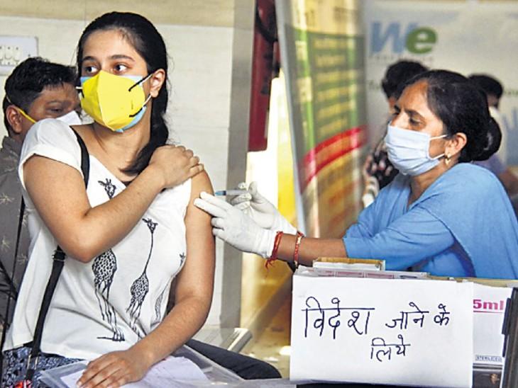 सात जून तक देश में 23.5 कराेड़ को लगा टीका, मौतें सिर्फ 0.0002%; केंद्र ने कहा- वैक्सीन से जान का जाेखिम न के बराबर|दिल्ली + एनसीआर,Delhi + NCR - Dainik Bhaskar