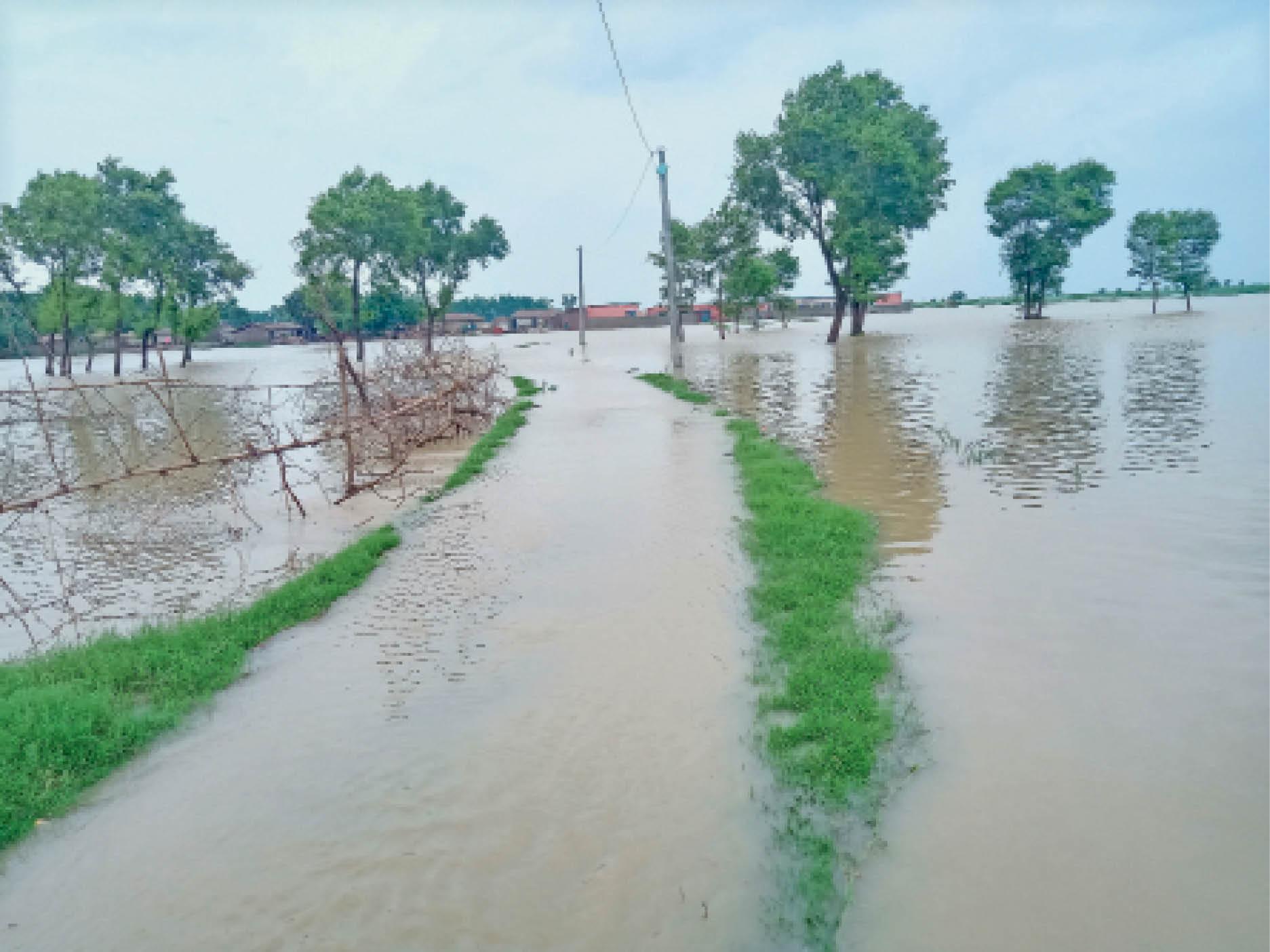 नए इलाकों में फैला पानी,योगापट्टी, बैरिया व नौतन के 17 गांवों के 1050 घरों में घुसा बाढ़ का पानी, 17 हजार आबादी हुई प्रभावित बेतिया,Bettiah - Dainik Bhaskar