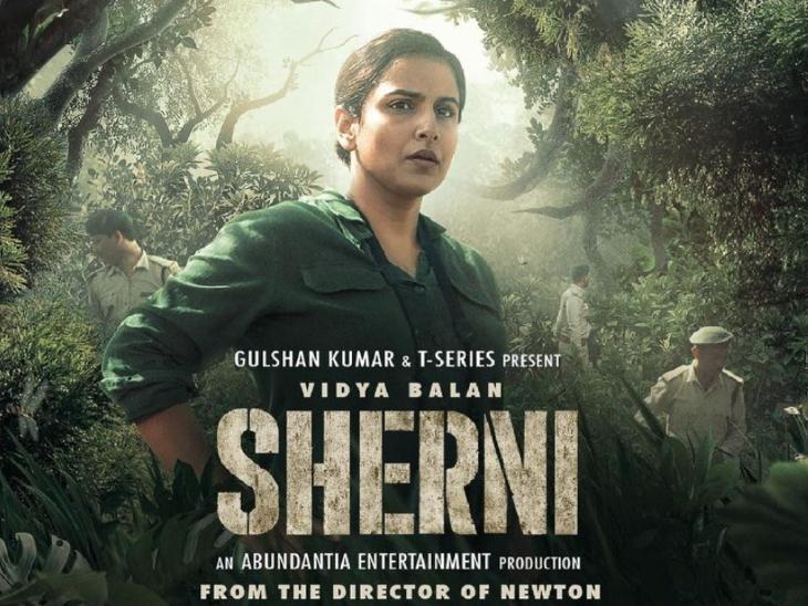 राजनीतिक मुद्दा बनी 'शेरनी' की सच्ची कहानी, विद्या बालन ने फिल्म में बखूबी निभाया है फॉरेस्ट ऑफिसर का किरदार|बॉलीवुड,Bollywood - Dainik Bhaskar