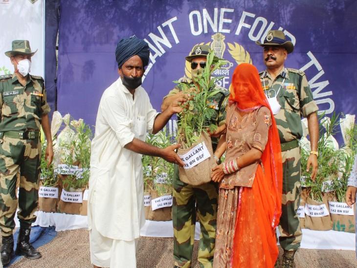 BSF मानसून में लगाएगी 3 लाख पौधे, गांवों में प्रत्येक परिवार को पांच-पांच मेडिशनल प्लांट भी देगी|बाड़मेर,Barmer - Dainik Bhaskar