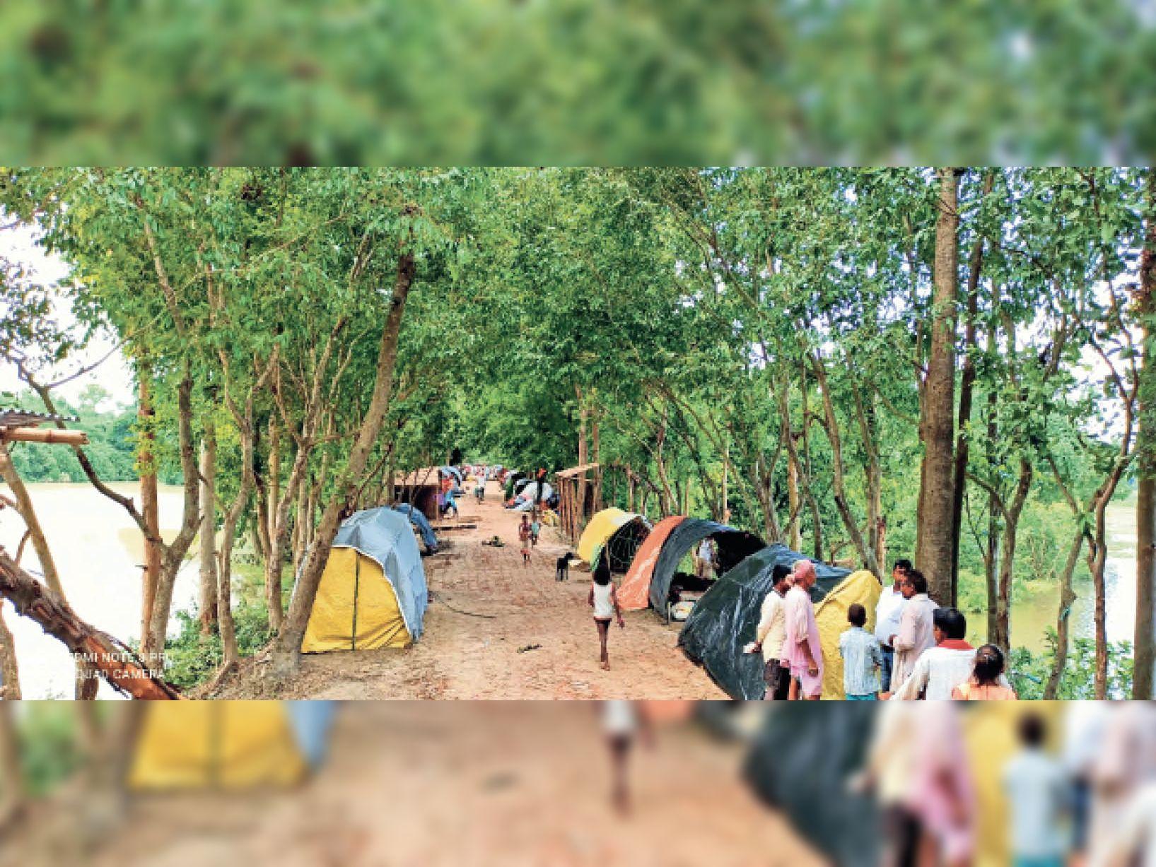 नौतन के मंगलपुर के पास चंपारण तटबंध पर बाढ़ प्रभावित लोग शरण लिए हुए हैं। इस साल मानसून के आगमन के साथ ही यह तटबंध सैकड़ों लोगों का शरणस्थली बना हुआ है। लेकिन यहां अभी तक बाढ़ पीड़ितों के बीच कोई भी सरकारी मदद नहीं पहुंची है। - Dainik Bhaskar