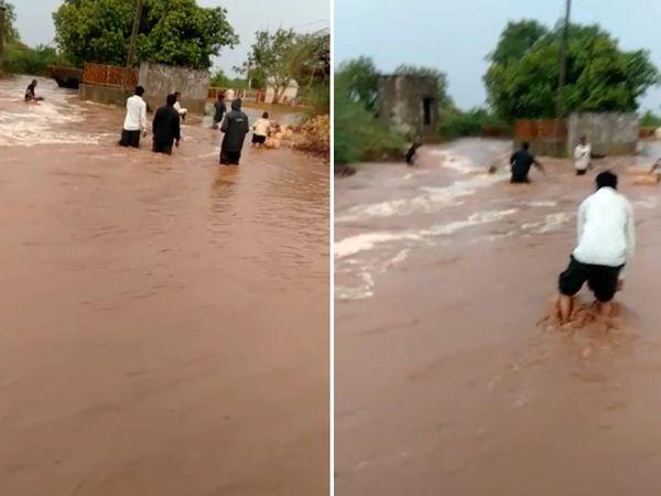 चित्रोडी गांव में बाढ़ में फंसी भेड़-बकरियों को बचाते गांववाले।
