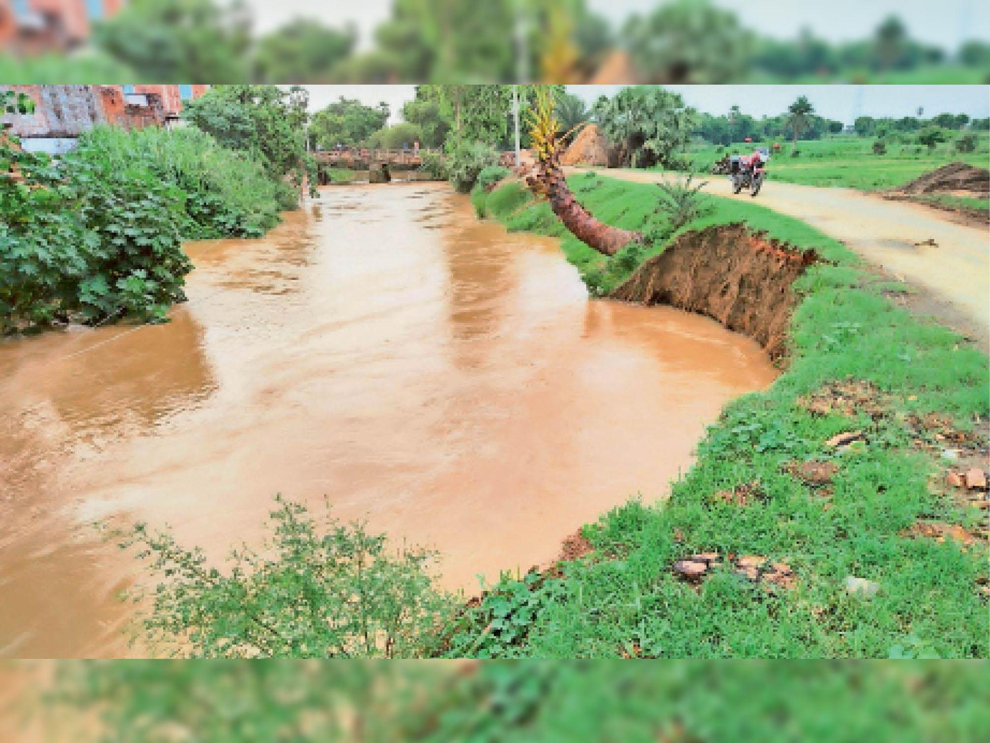 हरनौत: पंचाने नदी में बहाव से कटती मिट्टी - Dainik Bhaskar