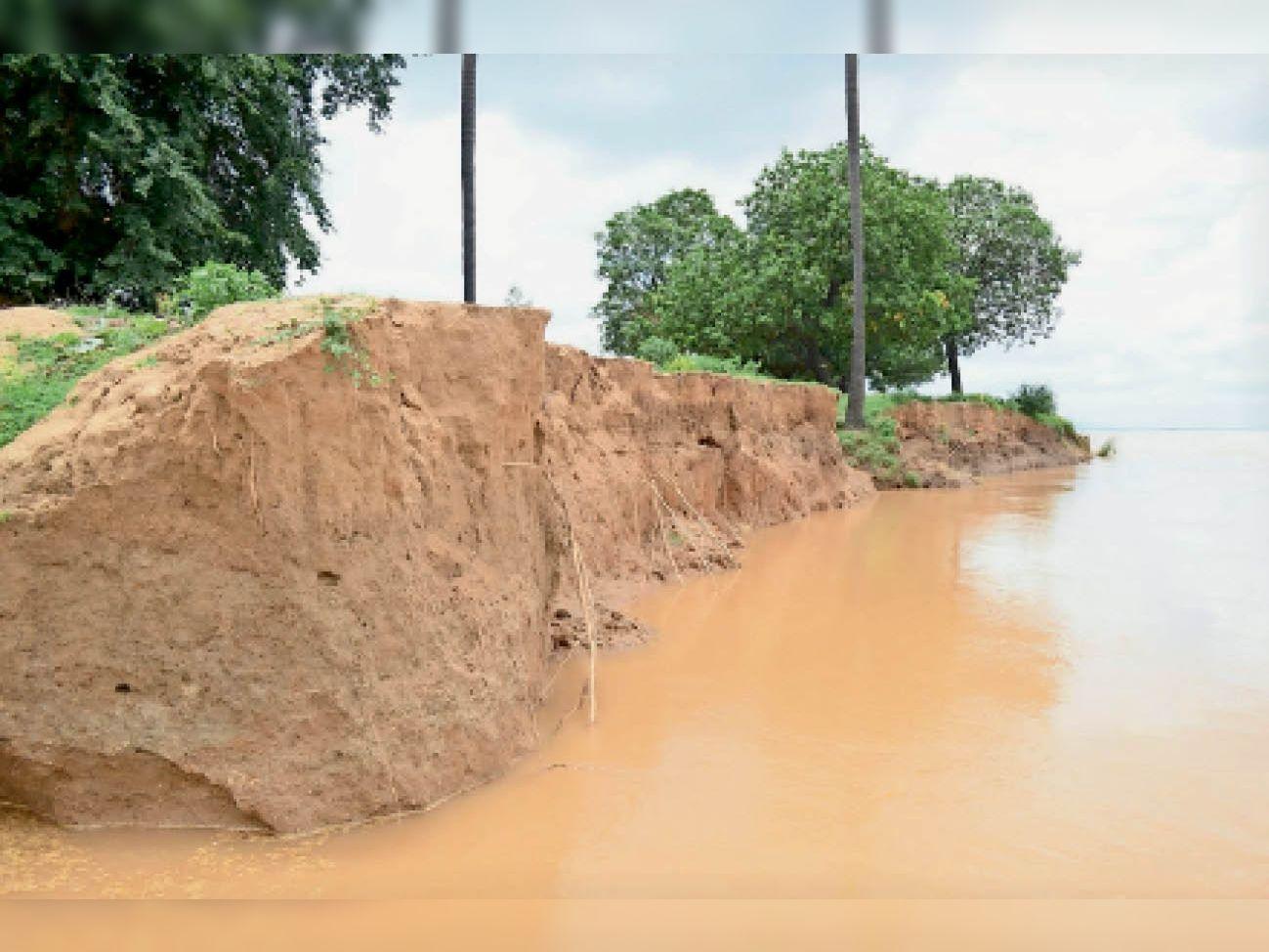 हर साल बाढ़ से साेन-काेयल में समा जाती है हजाराें एकड़ जमीन हैदरनगर,Haidarnagar - Dainik Bhaskar