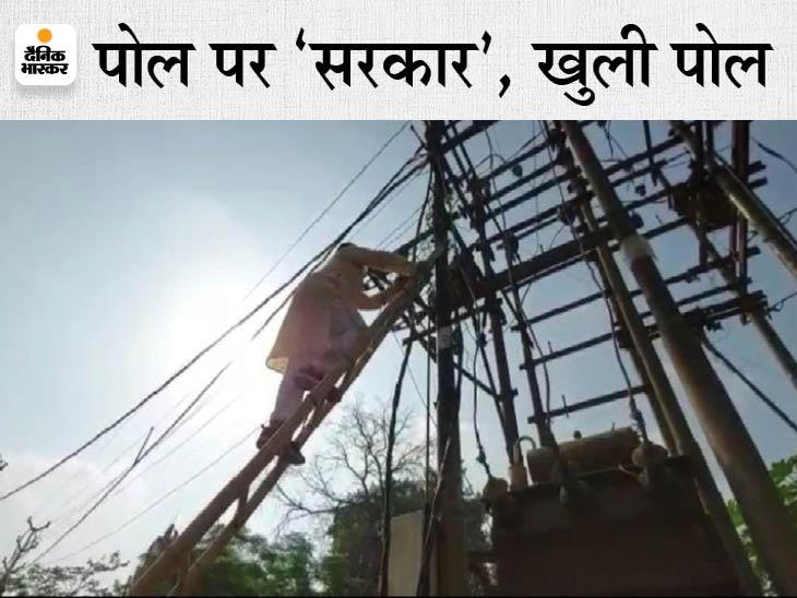 ऊर्जा मंत्री तोमर ने ग्वालियर में ट्रांसफार्मर पर चढ़कर झाड़ियां और घोंसले किए साफ, बदले में बिजली कंपनी के 3 JE की रोकी वेतन वृद्धि, दो AE, समेत 5 को नोटिस|ग्वालियर,Gwalior - Dainik Bhaskar