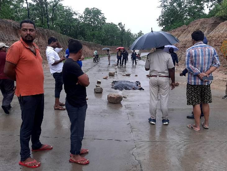 उमरिया के घुनघुटी रेंज के हाइवे पर अज्ञात वाहन ने बाघ के 10 माह के बच्चे को मारी टक्कर, मौत|मध्य प्रदेश,Madhya Pradesh - Dainik Bhaskar