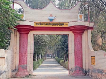 फतेहाबाद। गांव बैजलपुर का राजकीय विद्यालय।(फाइल फोटो) - Dainik Bhaskar