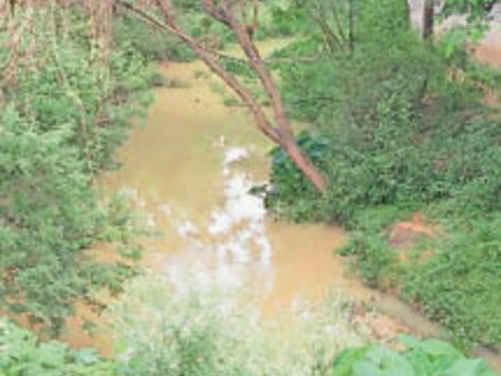 ग्रीन एरिया के रूप में डेवलप होगी पुग्गू नदी। - Dainik Bhaskar