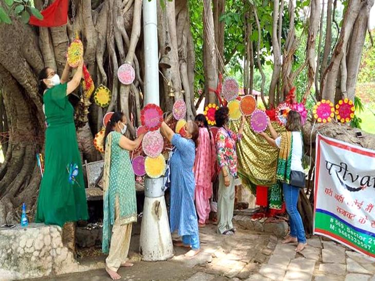 चंडीगढ़ में इस साल एक लाख 75 हजार पाैधे लगाए जाऐंगे। शहर में इस समय 46 फीसदी फॉरेस्ट और ग्रीन कवर है।एनजीओ ने पेड़ बचाने का संदेश दिया। - Dainik Bhaskar