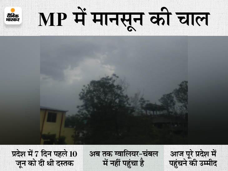 जावरा में 1 घंटे में 6.5 इंच बारिश, घरों में घुसा पानी, सीधी-सिवनी भी तरबतर; रीवा-जबलपुर और उज्जैन में भारी बारिश की चेतावनी|मध्य प्रदेश,Madhya Pradesh - Dainik Bhaskar