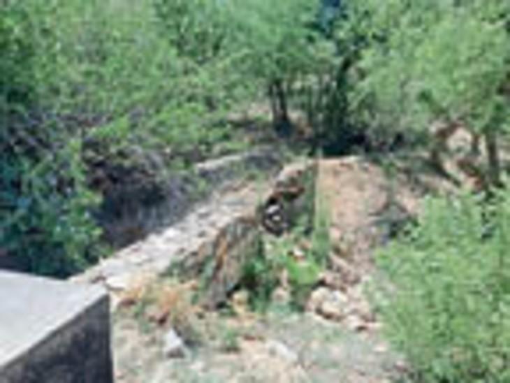 देसूरी. गुड़ा गोपीनाथ बांधा की क्षतिग्रस्त नहर। - Dainik Bhaskar