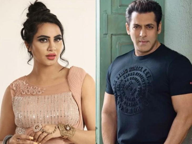 अर्शी खान ने 'स्वयंवर' में राइट लाइफ पार्टनर ढूंढने में मांगी सलमान खान की मदद|टीवी,TV - Dainik Bhaskar