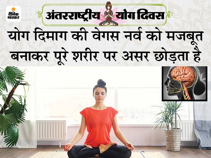 सांस लेने और छोड़ने का तरीका दिमाग पर असर छोड़ता है, डिप्रेशन, पाचन में गड़बड़ी और हृदय रोगों में फायदा होता है; जानिए योग कैसे काम करता है|लाइफ & साइंस,Happy Life - Dainik Bhaskar