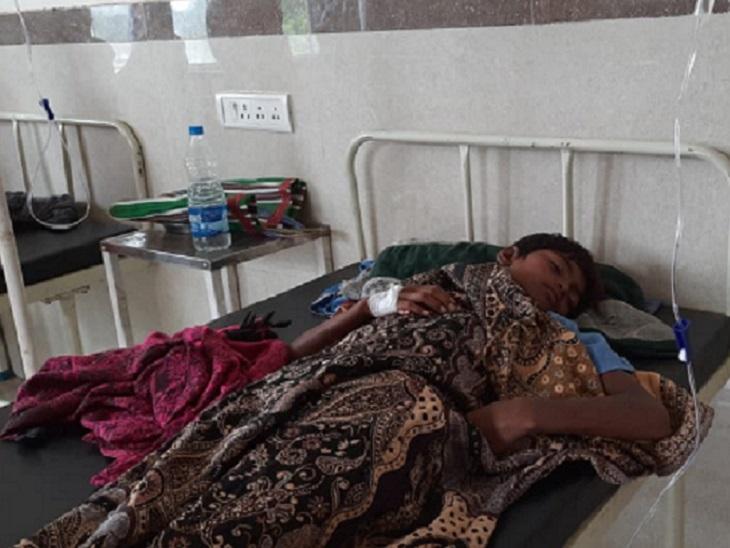जंगल से बीनकर लाए थे बच्चे, पकाकर सबने साथ में खाया, फिर दो परिवारों के 8 बच्चों सहित महिला भी हुई बेहोश|छत्तीसगढ़,Chhattisgarh - Dainik Bhaskar