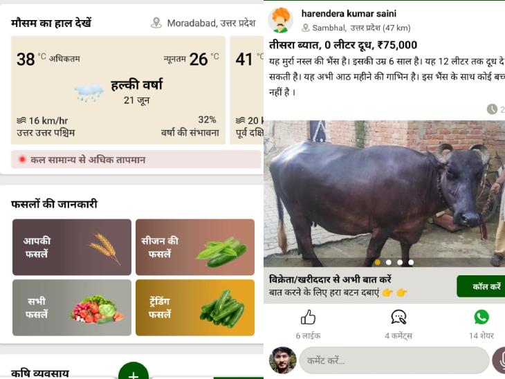 गूगल प्ले स्टोर से किसान इस ऐप को डाउनलोड कर सकते हैं। अकाउंट क्रिएट करने के बाद आप ऐप पर उपलब्ध सभी सुविधाओं का लाभ ले सकते हैं।