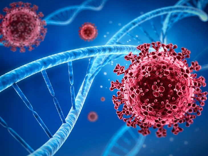 20 हजार साल पहले भी कोरोना ने मचाई थी तबाही, पूर्वी एशियाई लोगों की DNA जांच में मिले सबूत; वैज्ञानिकों ने बताया, कैसे बेअसर हुआ था वायरस|लाइफ & साइंस,Happy Life - Dainik Bhaskar