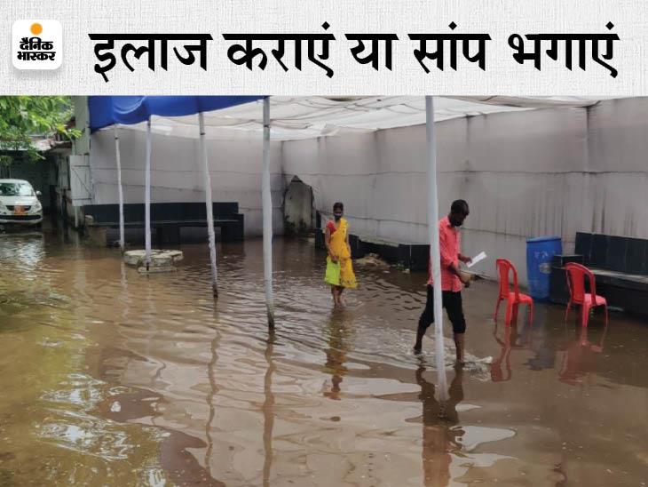 OPD में 48 घंटे से बारिश पानी भरा है, मरीज को सांप दिखा तो चीख पड़ा; बोला- जरा सा आगे बढ़ता तो डस लेता|बिहार,Bihar - Dainik Bhaskar