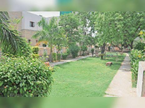 कांशी नगर में नगर निगम के 2 पार्कों की 535 वर्ग गज जमीन पर कब्जा अम्बाला,Ambala - Dainik Bhaskar