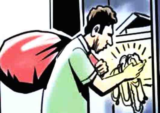कमरे में सो रहे रिटायर्ड निगम कर्मी के बेटे-बहू के तकिए के नीचे से 2 मोबाइल चुरा ले गए, सुबह जागे तो सामान बिखरा देख पता चला जालंधर,Jalandhar - Dainik Bhaskar