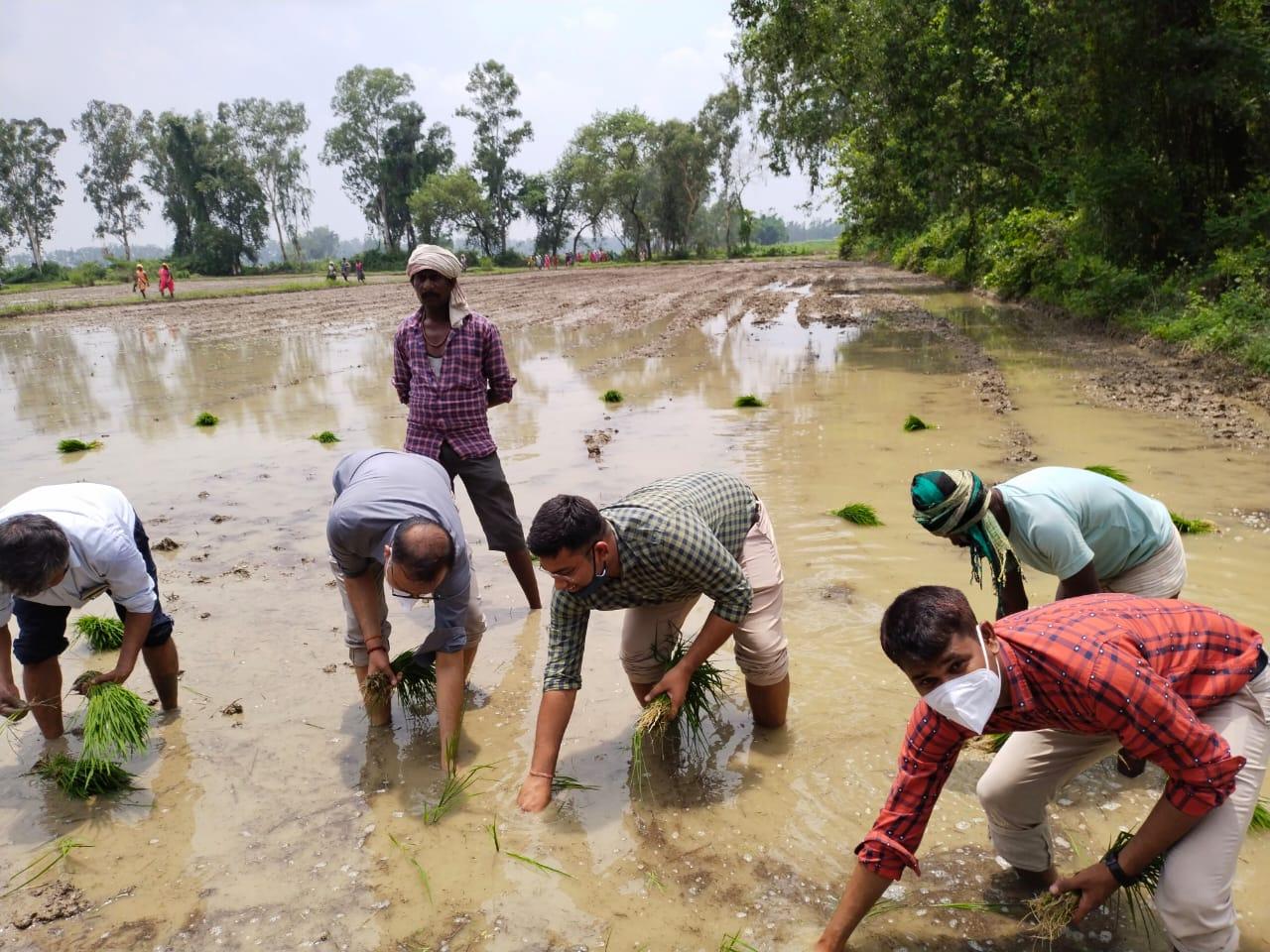 कृषि फार्म का निरीक्षण करने पहुंचे DM साहब पैंट ऊपर चढ़ा के शर्ट की आस्तीन मोड़ खेत के पानी में उतर गए, DM नया अवतार देख हैरत में पड़ गए किसान|वाराणसी,Varanasi - Dainik Bhaskar