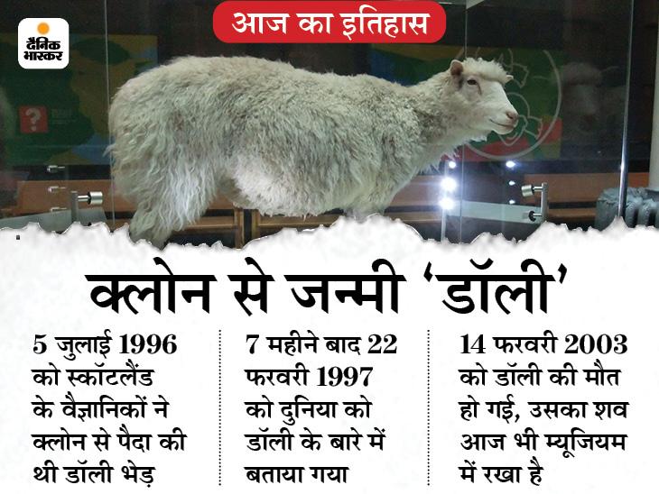लैब में बनी दुनिया की पहली भेड़ डॉली का जन्म हुआ; इसका नाम अमेरिकी सिंगर के नाम पर रखा गया था|देश,National - Dainik Bhaskar
