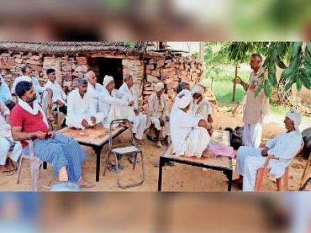 तातीजा, देवता और गोरधनपुरा से 10-10 किसान 15 जुलाई को जाएंगे शाहजहांपुर झुंझुनूं,Jhunjhunu - Dainik Bhaskar