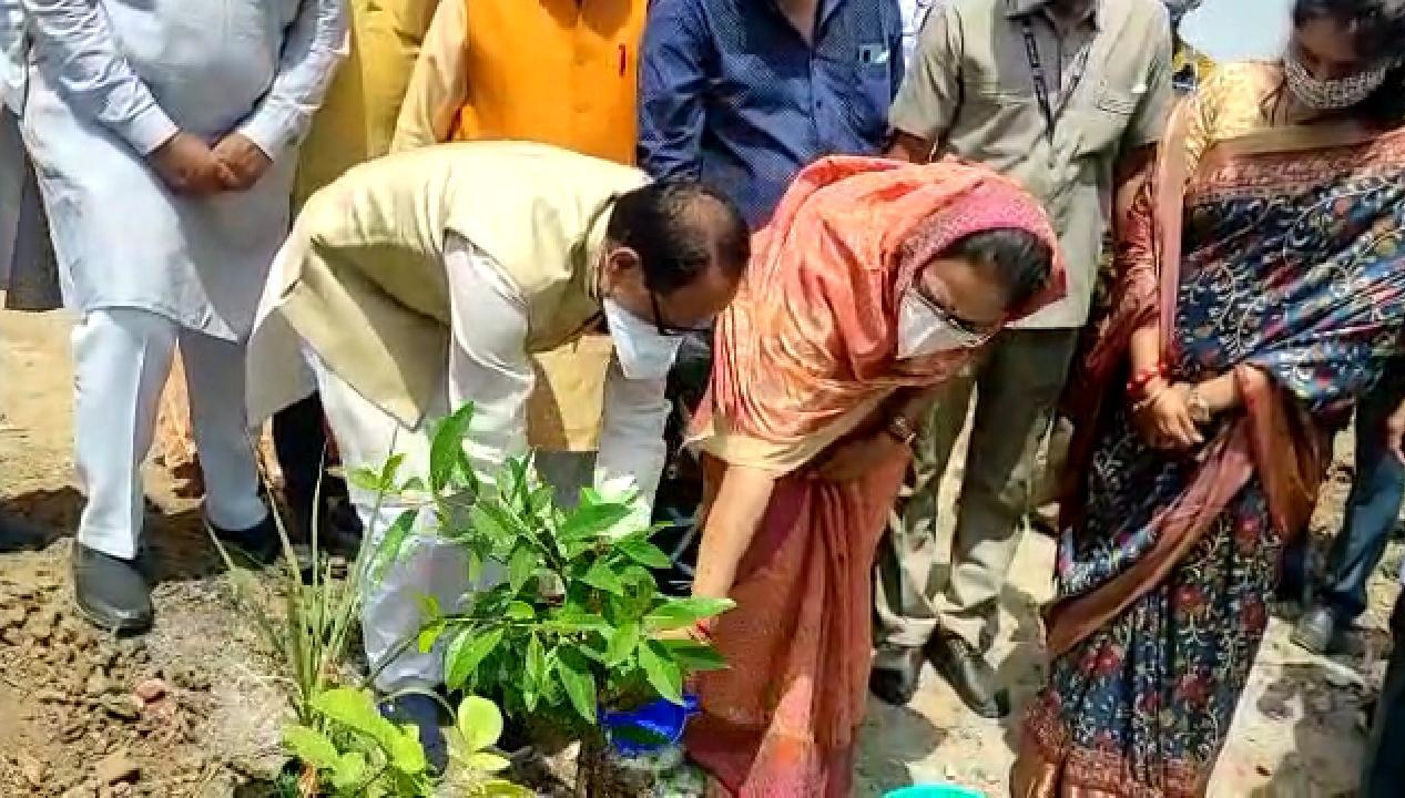 भोपाल के भदभदा विश्राम घाट में लगाए जा रहे 56 प्रजाति के 4500 पौधे, यह देश का पहला कोविड स्मृति वन, CM ने पत्नी के साथ पौधा लगाकर की शुरुआत|भोपाल,Bhopal - Dainik Bhaskar