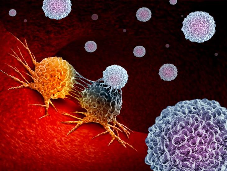 कैंसर के इलाज में दी जाने वाली इम्यूनोथैरेपी के साइड इफेक्ट से बचाएगी गठिया की दवा, जानिए ऐसा होता क्यों है लाइफ & साइंस,Happy Life - Dainik Bhaskar