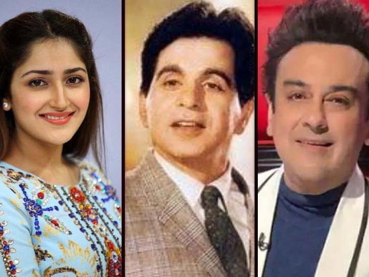 साएशा सैगल से लेकर अदनान सामी तक, दिलीप कुमार के इन फैमिली मेंबर्स ने रखा बॉलीवुड में कदम, कुछ हुए पॉपुलर कुछ रह गए अनदेखे बॉलीवुड,Bollywood - Dainik Bhaskar