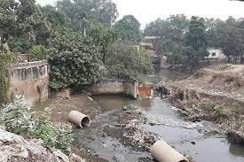 वाराणसी में सीवेज का आंकलन किए बगैर ही बना दिए रमना एसटीपी, जल निगम के अफसरों पर CM योगी नाराज, अब होगी कार्रवाई|वाराणसी,Varanasi - Dainik Bhaskar