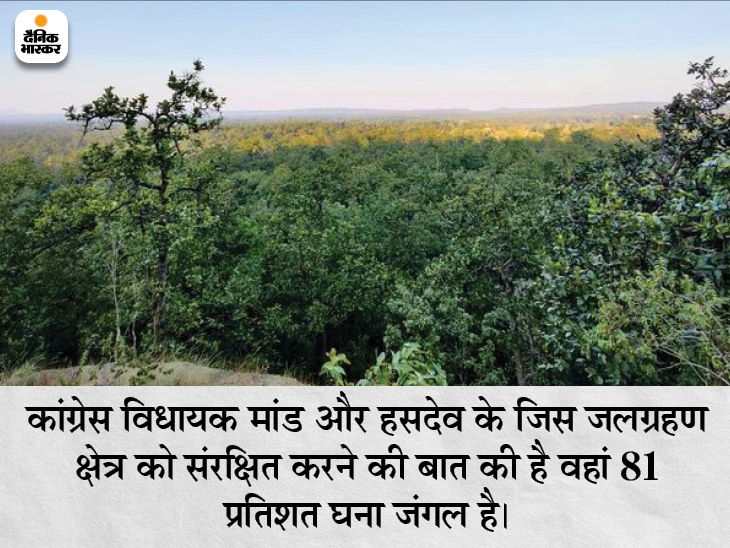 लालजीत सिंह ने CM बघेल को पत्र लिखकर कहा- मांड-हसदेव क्षेत्र को भी हाथी रिजर्व फारेस्ट घोषित करे सरकार|रायपुर,Raipur - Dainik Bhaskar