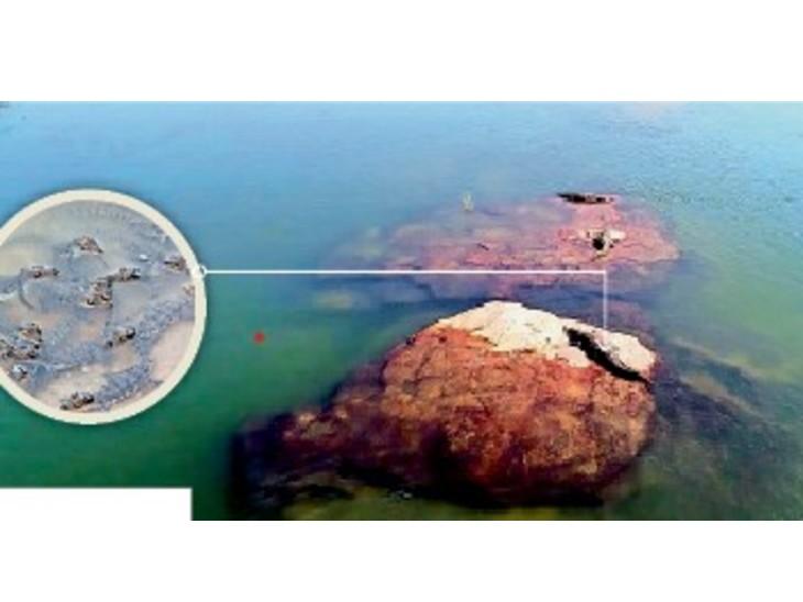 भैंसरोडगढ़ वन्य जीव अभयारण्य में बने सेटलडैम रिलोकेशन सेंटर के क्रोकोडाइल प्वाइंट पर इन दिनों मगरमच्छ के अंडों से निकलकर छिपकली के आकार के और कुछ उससे बड़े बच्चे पानी में अठखेलियां करते नजर आ रहे हैं। - Dainik Bhaskar